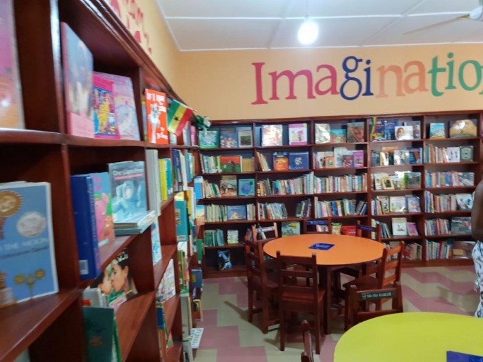 Beautiful Minds Library (Inside the Library)28