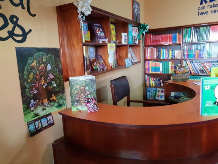 Beautiful Minds Library (Inside the Library)34