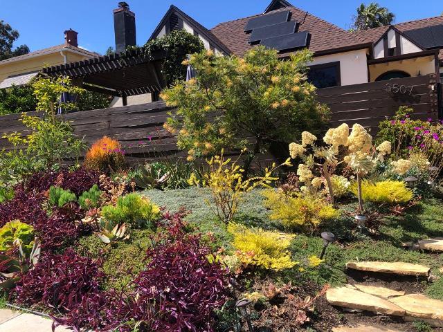 Garden Day Event (6)