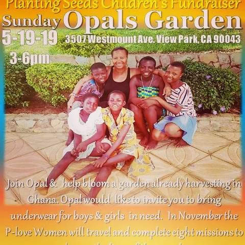 Planting Seeds Children's Fundrasier|Opal's Garden